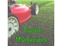Garden maintenance (getting ready for winter)