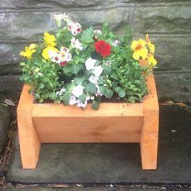 Flowers planters baskets