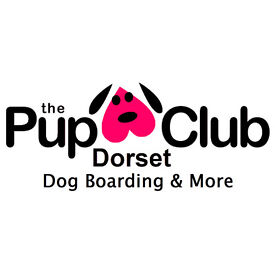 The Pup Club, Dorset - Bournemouth home from home dog sitter