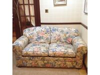 Sofa bed double bed in immaculate condition rarely used ,for visitors only, mint
