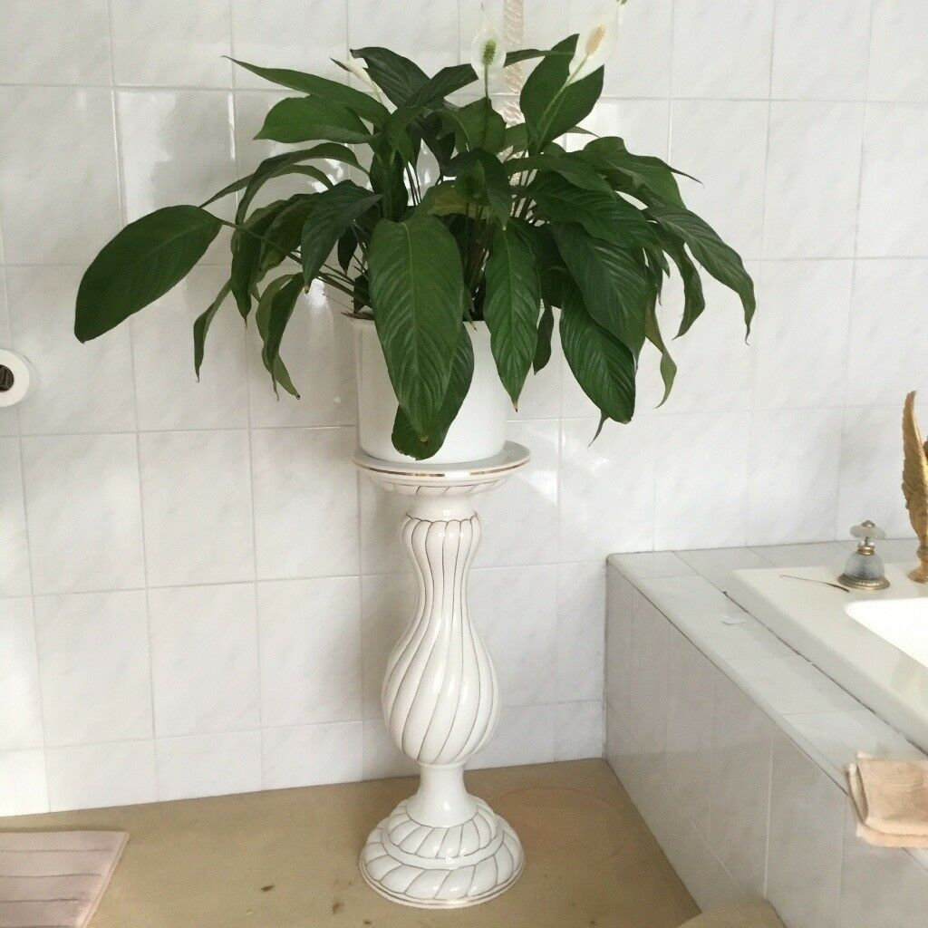 Jardinair /Plant Stand