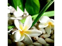 NEW! Oriental Full body Relaxing or Deep Tissue Massage in Tonbridge/Tunbridge Wells/Sevenoaks/Kent