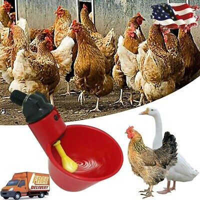 5pcs Poultry Water Drinking Cups- Chicken Hen Plastic Automatic Drinker Usa