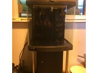Marine/tropical fish tank 90litre nano cube with stand