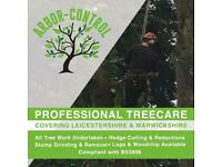 Professional tree and hedge care