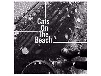 Trumpet Player wanted for on the rise indie band