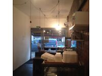 A1, A5,Retail,office,Italian/Vietnamese/Pizza/Coffee shop/Takeaway £300pw inc business rates & water