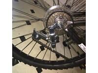 NEED GONE any offers.. ladies adult bike. Unwanted gift. Fantastic bike