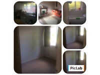 House share with professional female - 2 bedroom house in Shelton Lock