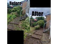 Mr Meadow Garden servicing 🌳
