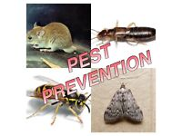Caravan and motorhome pest control