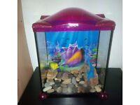 17l glass aquarium