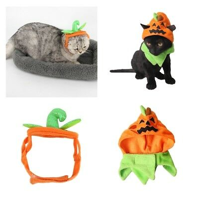 Halloween Cat Costume Hats Headbands Festival Pumpkin Costumes for Dogs Cats (Cat Costumes Halloween)