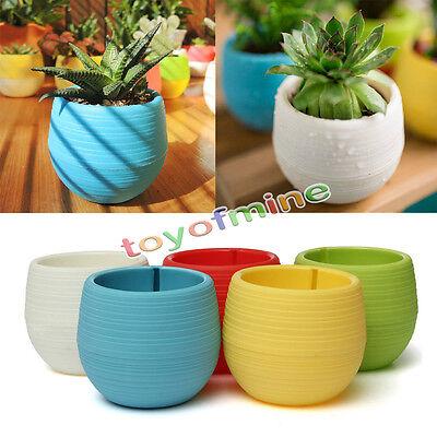 Vasi di fiori Fioriera Piantare Casa Giardino Ufficio Arredamento Mini Plastica
