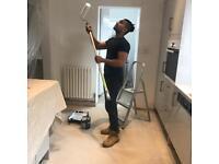 Nemo painter for best price/handyman