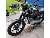 Yamaha ybr125 09 plate
