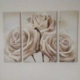 Large rose canvases!
