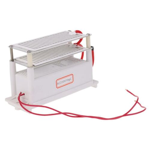 AC220V 10G Portable Ozone Generator Double Ceramic Plate Air Ozonizer