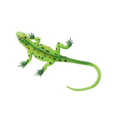 Lebendige Gummi Eidechse Modell Figur Reptil Tier Pädagogisches Spielzeug -