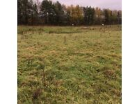 0.97 ha (2.42 acres) of land to let, Glasgow Road, Kirkintilloch