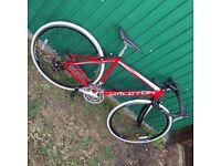 Halcyon racing bike with correa wheels
