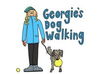 Dog walker. Beaminster, Bridport, Crewkerne and surrounding areas