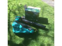 Bosch leaf blower/sucker