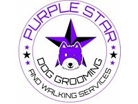 Dog Grooming Services in quiet home environment!
