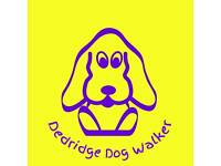 Experienced dog walker available in Dedridge and surrounding areas!!