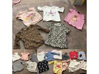 Large 12-18 moths girls clothes bundle