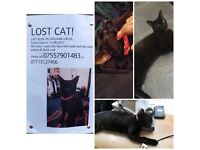 MISSING Black last in Forest Gate