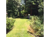 Gardener wanted for mature garden in Surrey