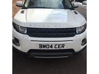 Range Rover evoque mint