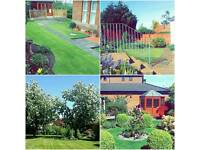 Andy Longstaff Garden Maintenance