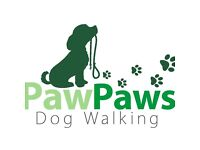 PawPaws Dog Walking-Dog walker available