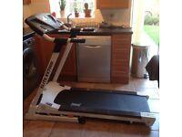 Everlast Treadmill Elite EV7000