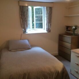 Double room in 3-bed share in Redland