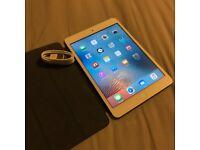 iPad mini Wi-Fi 16GB - Silver (immaculate)