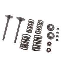 Intake & Exhaust Valves Spring Kit for 110cc ATV Dirt Bike