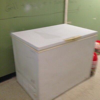 conmercial chest freezer