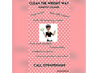Experience Domestic Cleaner