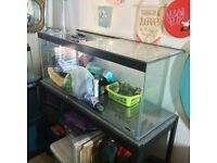 200litre Fish Tank/Like New/Lots of Extras
