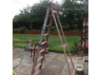 Old wooden ladder - ideal for displaying goods in gift shops etc.