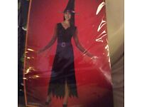 Adult Ladies Mystical Witch Hallloween costume - size small - brand new
