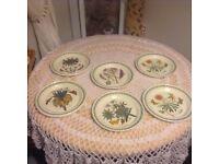 Portmerion botanics 6 dinner plates