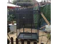 Large Bird Cage (for larger birds like African Greys, etc) £70 Good Condition