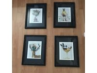 4X Fab Funky Framed Book Prints
