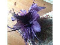 Aubergine coloured Fascinator