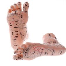 Set of 2pcs Human Acupuncture Feet Reflexology Acupoint ...