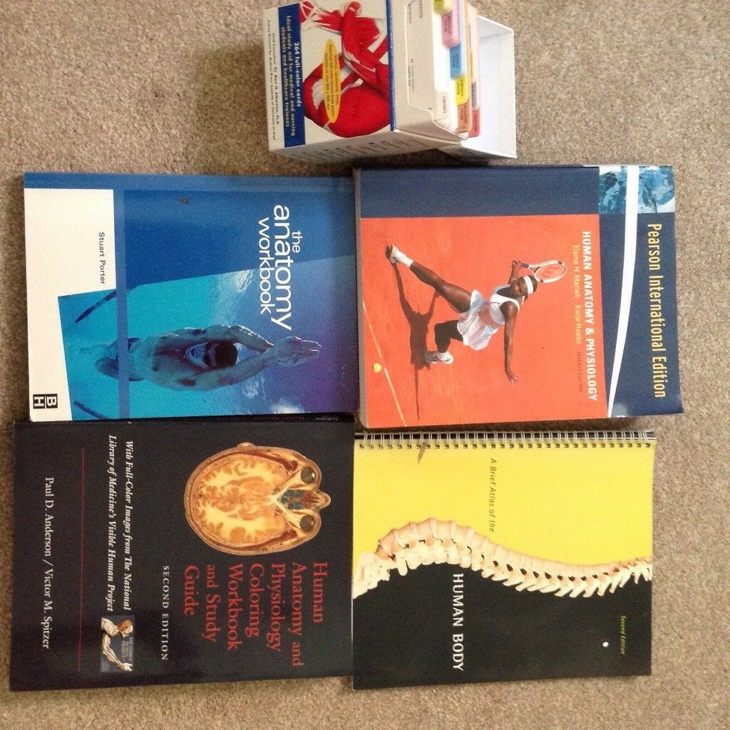 Human Anatomy and Physiology text and work books | in Poole, Dorset ...